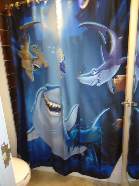 Shower curtain in other bathroom