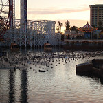Silly Symphony Swings will look great at night across the pier